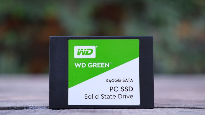 WD-Green-SSD-2