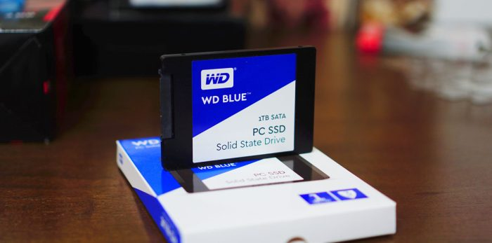 WD-Blue-SSD-1TB-5